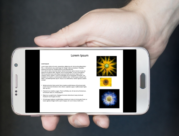 smartphone-bd ppt
